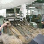 В Ростовской области построят крупнейшее предприятие по переработке льна в мире